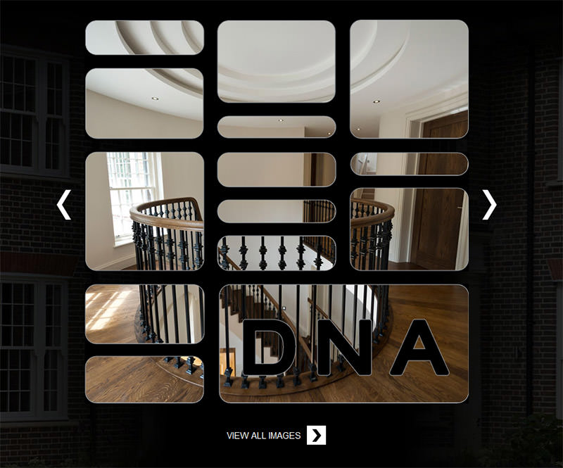 DNA IC Gallery Animation